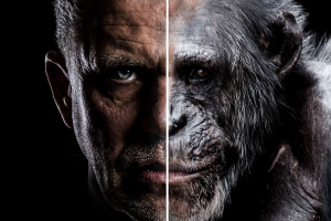 """""""Ape Man – Prawdziwy przodek człowieka?"""""""