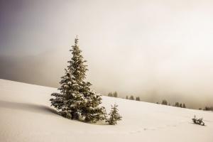 Nabożeństwa wokresie świątecznym